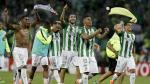 Atlético Nacional festejó así su pase a la final de la Copa Libertadores 2016 - Noticias de sao borja